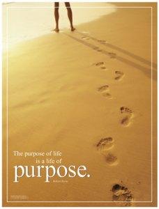 purpose-posters